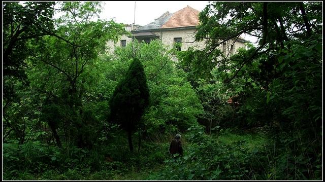 门进去的,这是一个小后院,楼房后面是三个半圆形池子,不知当年是