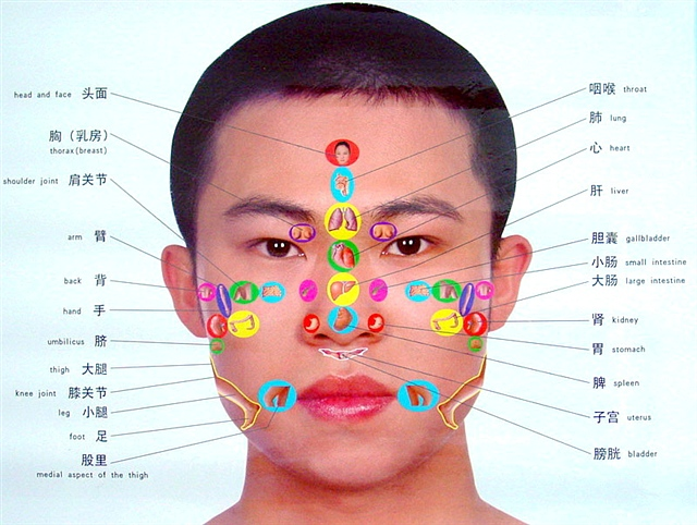 小孩头部结构图