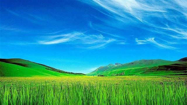 """芝麻,开门(原创诗歌)——送给我的博友""""紫幽竹"""" - 深秋 - 深秋的故事的博客"""