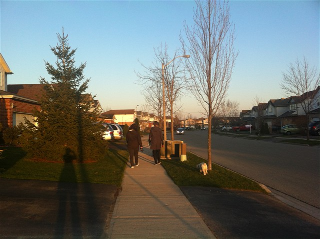 移民,就是换一种活法——走近加拿大(十九)(看图说话) - 深秋 - 深秋的故事的博客