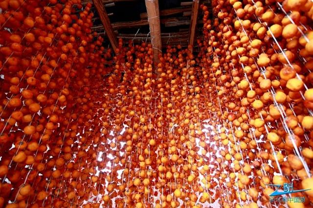 红柿子的甜蜜诱惑